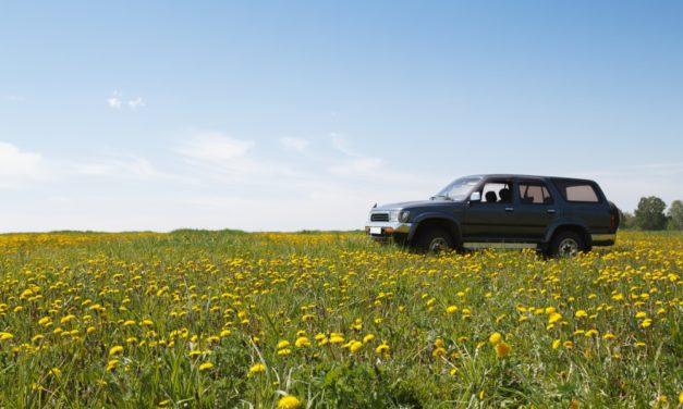 Skal du sælge eller købe en brugt bil? Bliv klogere på prissætning her!